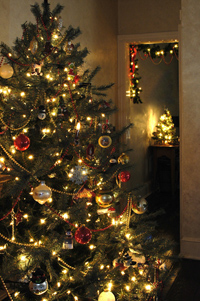 Top Tips for Surviving Christmas