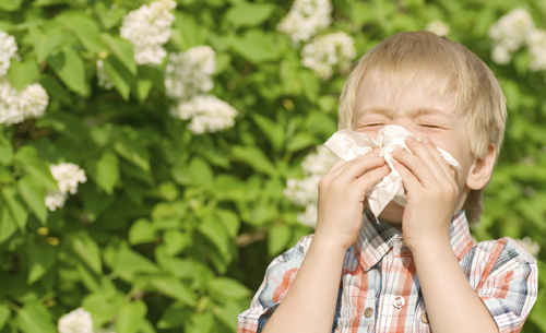 kids and hayfever