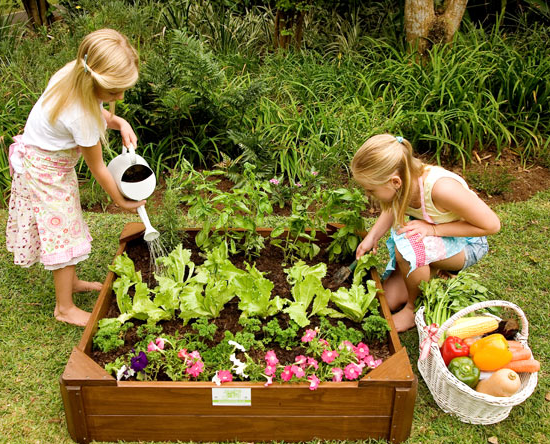 Children Growing their own Vegetables
