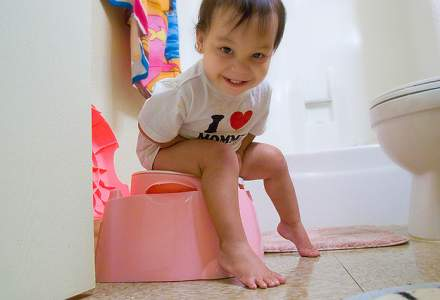Toilet Trouble: How to Train your Toddler