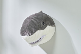 Shark wall decor