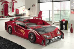 Jackson Sports car bed